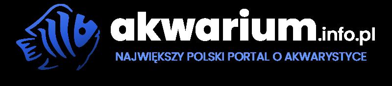 akwarium.info.pl